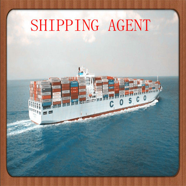 2014 hot motor sea shipping forwarder to Hamburg germany from qingdao in china--Lincoln