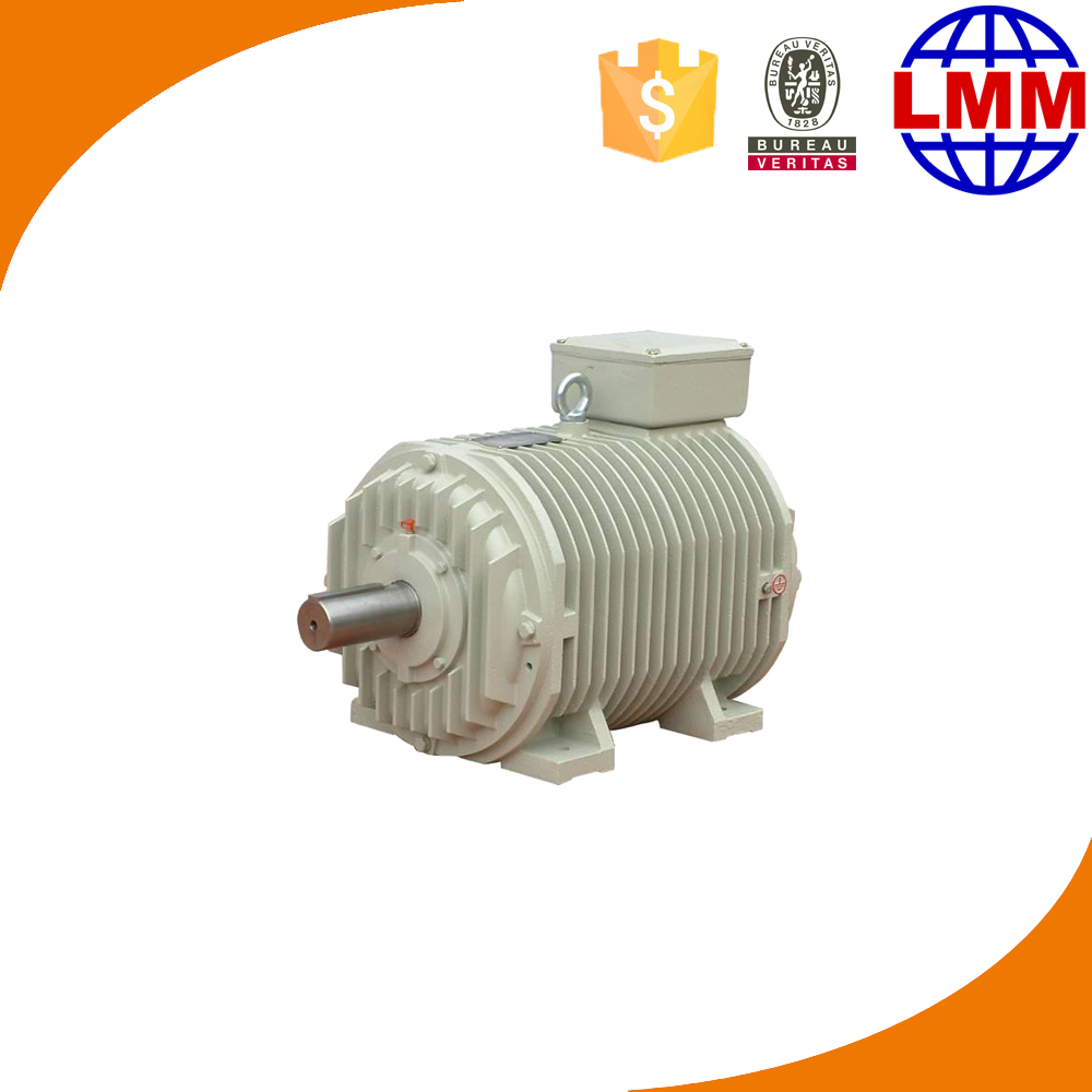 PMSM induction electric motor