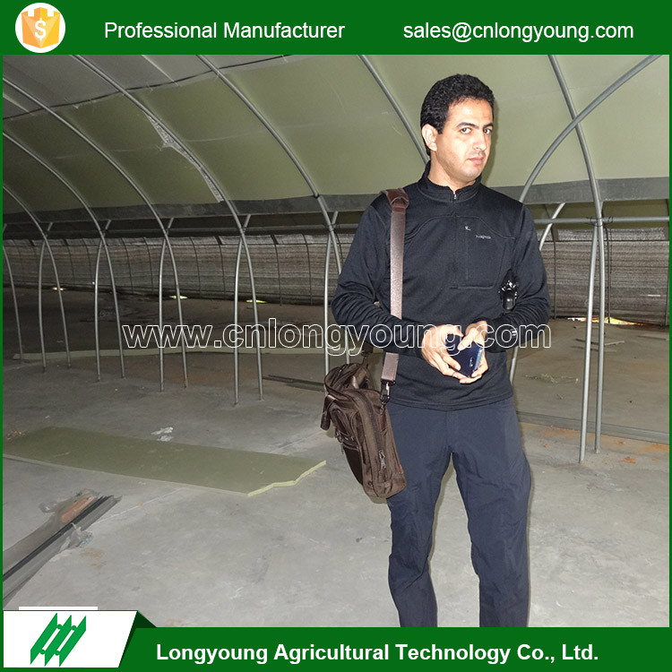 Professional film agricultural hydroponic greenhouse tunnel