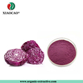 Good Raw Material High Quality Purple Cabbage Powder