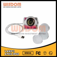 High Performance Lamp 3 Led Coal