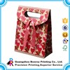 Shopping Paper Bag/Gift Paper Bag/Paper Shopping Bag with ribbon handle
