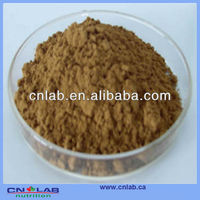 GMP/Haccp/ISO9001 Factory Provide 100% Natural Cassia Nomame Flavanols in High Quality