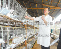 Galvanized Rabbit Cage with Tray
