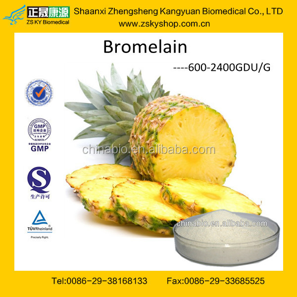 GMP Manufactuer Supply High Quality Enzyme Bromelain