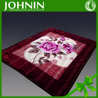 Custom 2ply High Quality Soft Polyester Mink Blanket