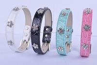 Pet Buckle Strap Dog Collar