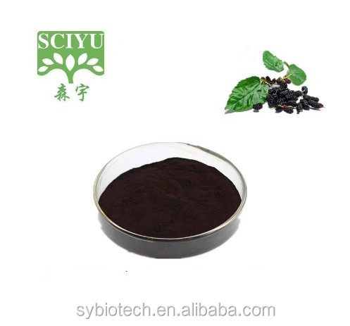 High quality mulberry fruit extract 10:1 20:1