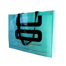 Eco-friendly foldable reusable Promotional pp non woven shopping bag