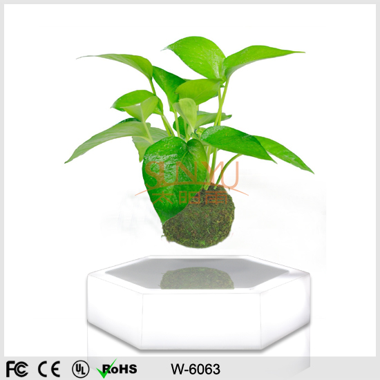2016 New Design Magnetic Floating Air Plants Bonsai Display Stand with LED Light W-6063