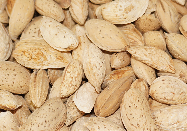 ALMOND IN SHELL AL150