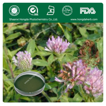 Good Quality Red Clover Extract,8% Total isoflavones