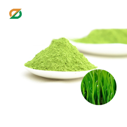 Organic green diet food wheatgrass Powder Concentrate Juice Powder