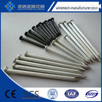 Top quality common nails/common iron wire nail/3 inch common nails