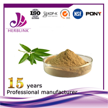 Pure natural Good Quality Mango Seed/Leaf Extract powder for sale
