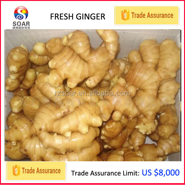 Ginger healthy benefits with black ginger price