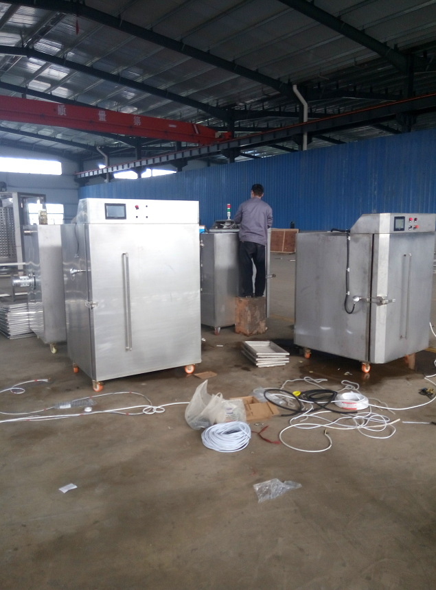 equipment for drying fruits and vegetables/Frozen fruit and vegetable quick freezing IQF tunnel freezer equipment