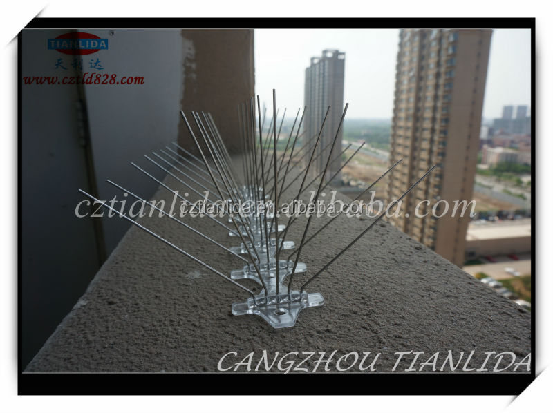 bird pest control products bird spike made in china