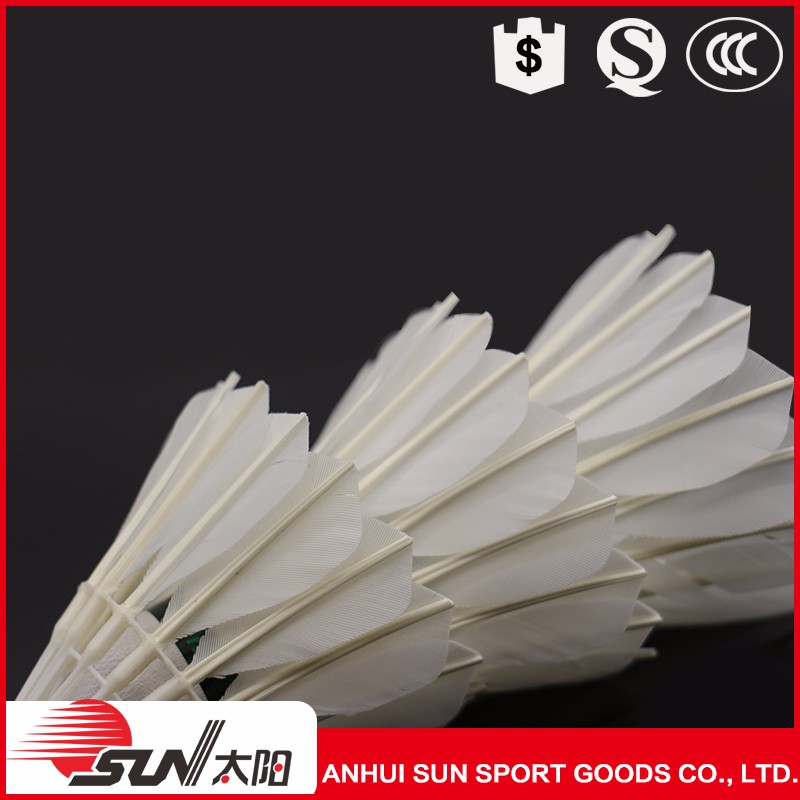 Popular China Good Quality Fleet Badminton Indoor Manufacturer