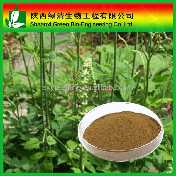 Triterpenoid Saponis 2.5%,5%,8%/Triterpenoid Saponis 10%~80% Hplc/High Quality Gotu Kola Extract