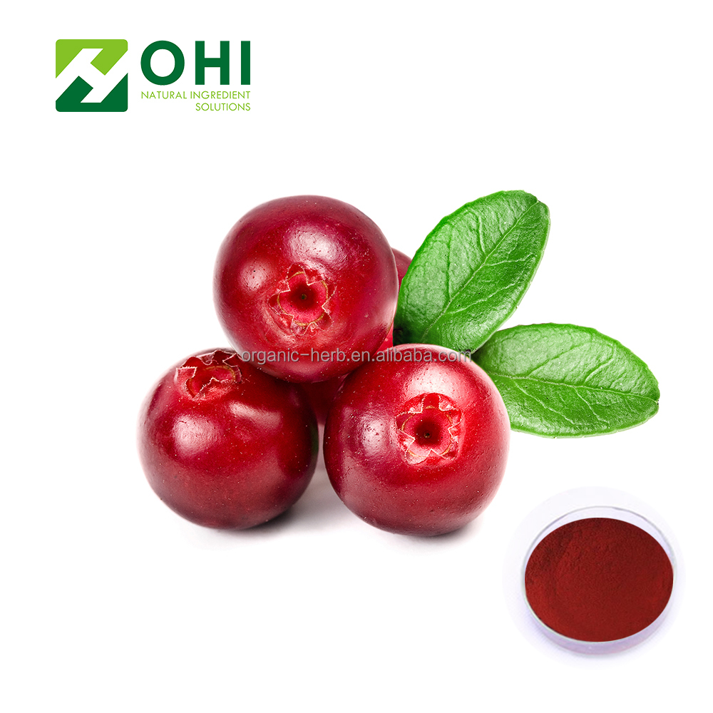 High Quality Cranberry fruit dried powder and cranberry extract proanthocyanidins