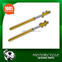 Motorcycle Inverted Front Fork