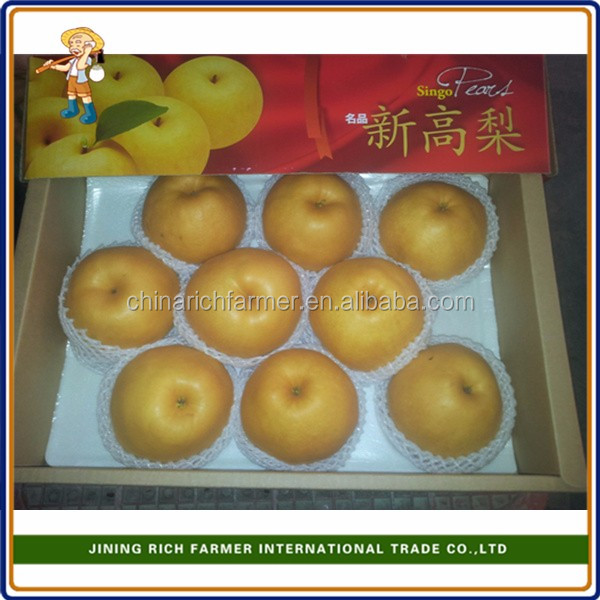 Super Quality Fresh Asian Pear From China