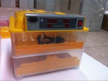 CE approved 96 eggs Professional mini incubator used/ Poultry incubator for sale