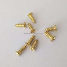 China Screw Manufacturer M2 Small Furniture Cam Lock Down Screws