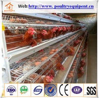 high quality egg chicken cage system for sale