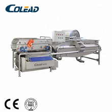 SUS 304 vegetable and fruit washing machine/salad processing line