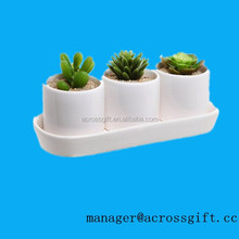 White Ceramic Design Succulent Plant pot Display Set w 3 Pots & 1 Water Draining Tray