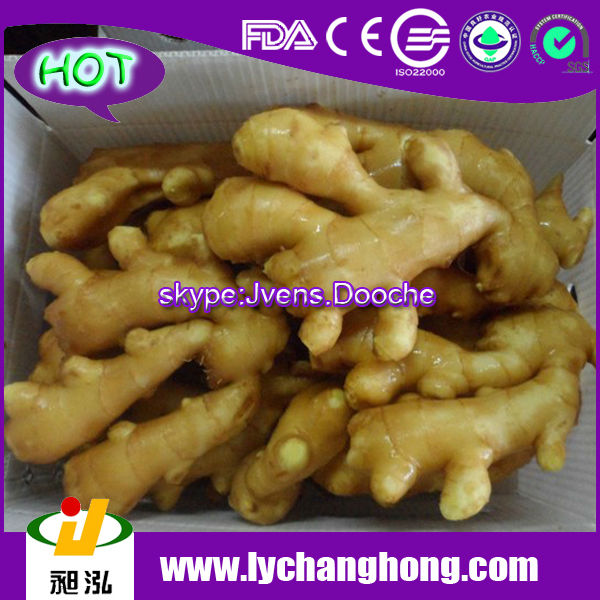 Market Price of 2014 New Crop Laiwu Fresh Ginger Root