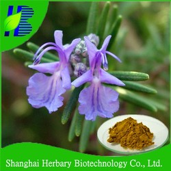 Bulk natural Rosemary Extract 10:1, Carnosic acid / Kosher herbal Extract