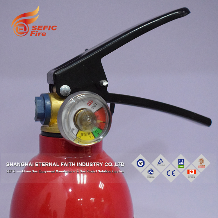 Customize OEM Red Extinguisher Fire Dry Powder Fire Extinguisher