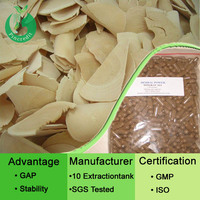 Tongkat ali root extract Tongkat Ali Extract Tongkat ali extract powder