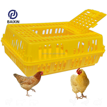 Poultry Farm Transport Cage For Pullet Factory Sell White Logo Print Free Pigeon Transport Cage