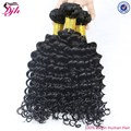 High quality Malaysian hair unprocessed wholesale virgin malaysian hair