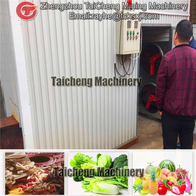 30t/h fruit & vegetable drying machine in United States