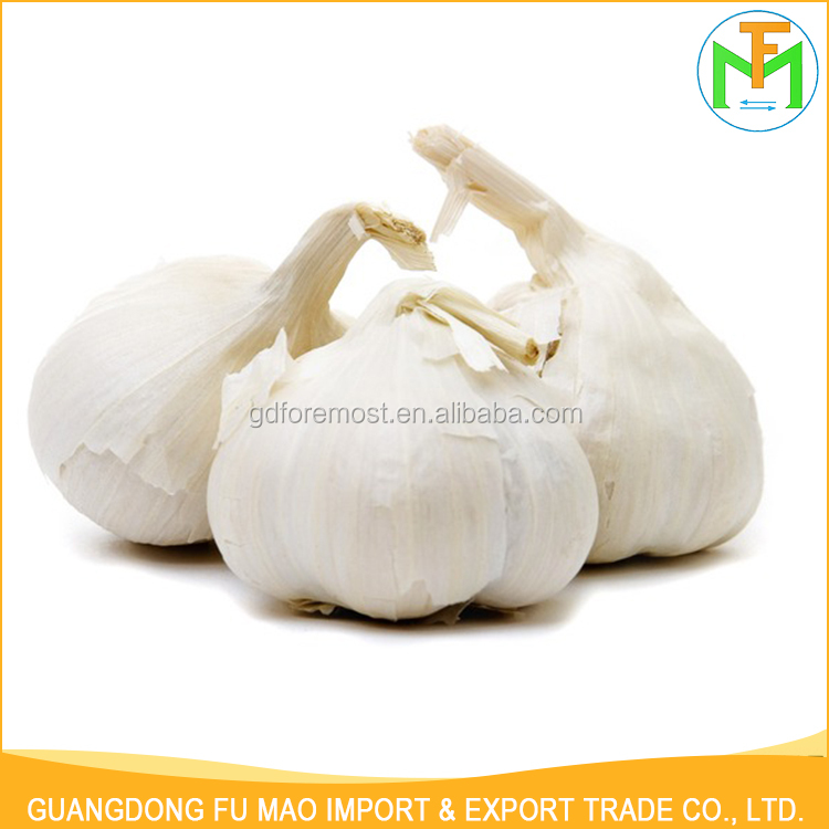 High Quality All The Year Round Supply Shandong Organic 5.5Cm Pure Snow White Garlic