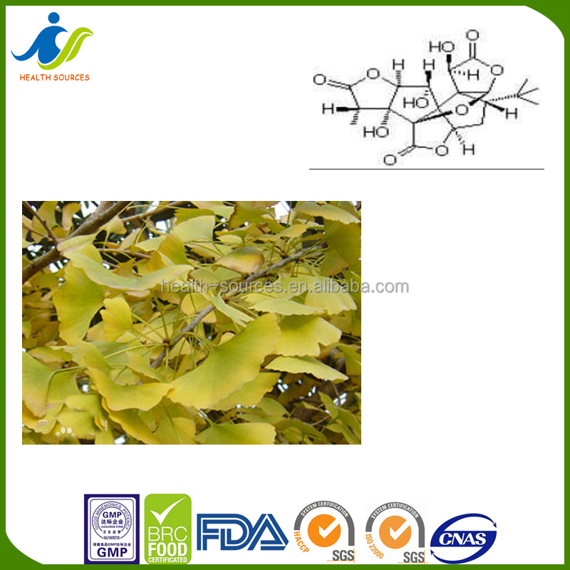 Supply natural extract best selling Ginkgo Biloba