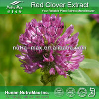 High Quality Red clover extract, red clover isoflavone, Red clover powder