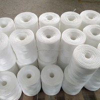 Plastic Pp Packing Rope For Capsicum