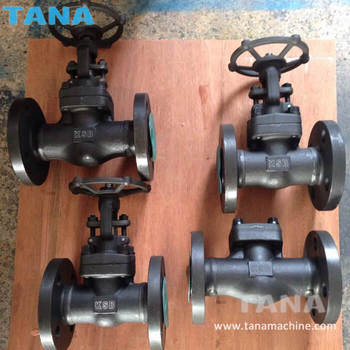Forged Steel Flangeds connection A105N 300lb 600lb gate valve