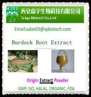 High Quality Burdock Root Extract Arctiin 10% 20% 40% 10:1 20:1