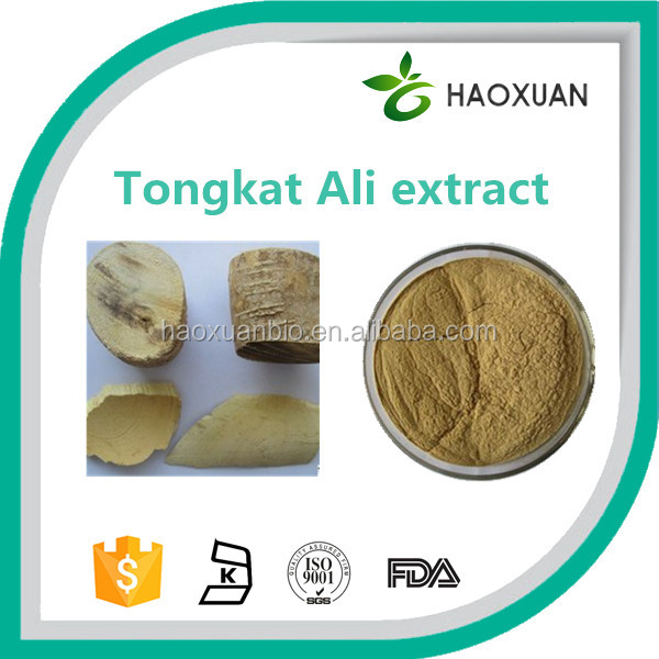Factory wholesale naturally organic tongkat ali 200:1