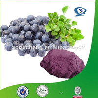 100% Natural acai berry brazil extract/organic acai berry/acai berry brazil powder