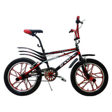 20 inch Free Style BMX Bicycle SH-BMX081