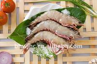 Brown Tiger Prawn