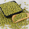2017 new crop food grade Green Mung Bean for planting